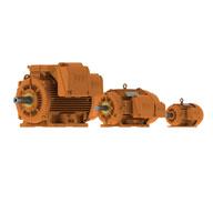WEG W22 Mining
