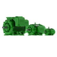 WEG W22 Electric Motor